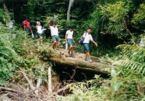 The trek to the waterfall (June 2001)